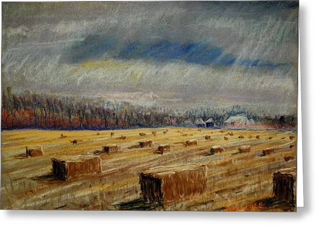 Painted Wood Pastels Greeting Cards - Lots of Bales Greeting Card by Tim  Swagerle