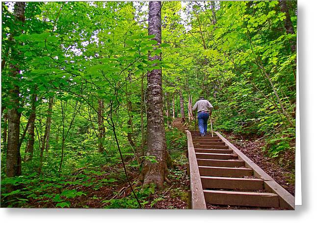 Qc Greeting Cards - Lots of Steps on La Chute Trail in Forillon NP-QC Greeting Card by Ruth Hager