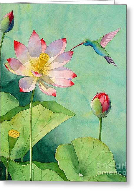 Hummingbirds Greeting Cards - Lotus And Hummingbird Greeting Card by Robert Hooper