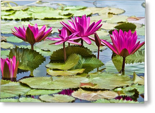 Floral Digital Art Greeting Cards - Lotus Blossoms Greeting Card by Marcia Colelli