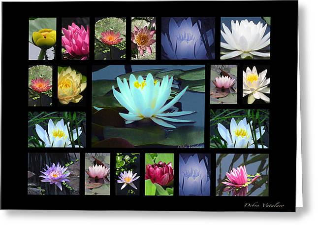 Vision Of Loveliness Greeting Cards - Lotus Cluster Greeting Card by Debra     Vatalaro