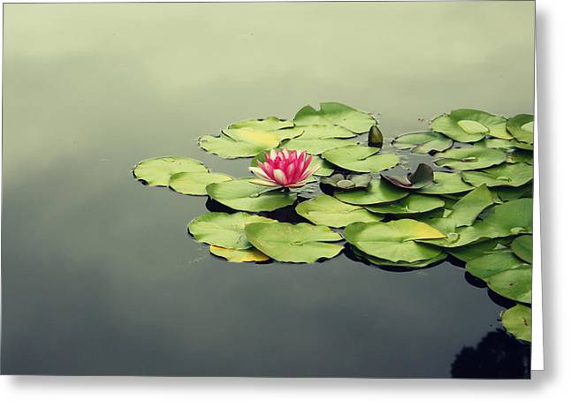 Mystical Landscape Mixed Media Greeting Cards - Lotus Flower Greeting Card by Barbara Ki
