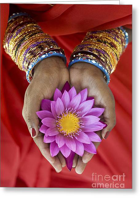 Spirituality Photographs Greeting Cards - Lotus Offering Greeting Card by Tim Gainey