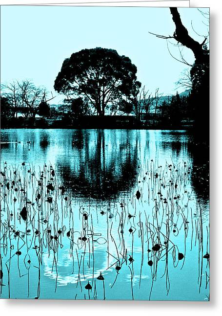 Lotus Full Bloom Greeting Cards - Lotus Pond - Winter Greeting Card by Larry Knipfing