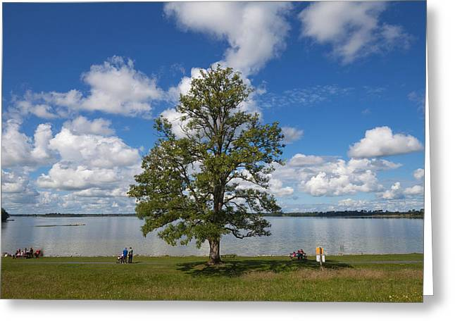 Lough Greeting Cards - Lough Ennel From The Gardens Greeting Card by Panoramic Images