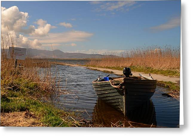 Lough Gill In Co.kerry Greeting Card by Barbara Walsh