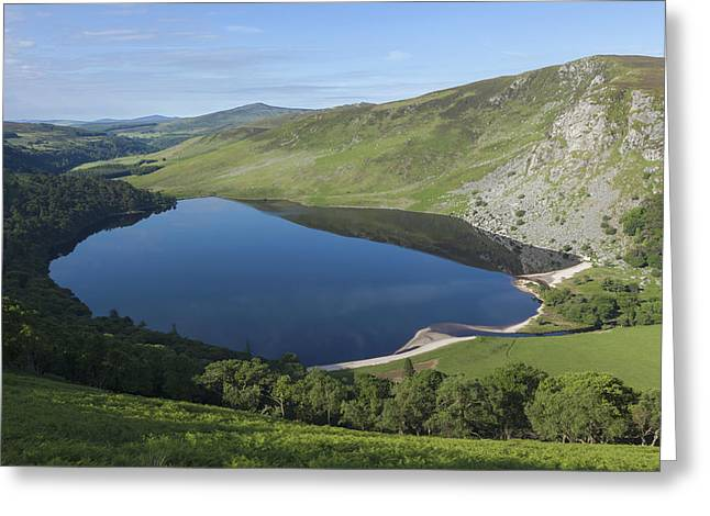 Green Day Greeting Cards - Lough Tay And Wicklow Mountains_ Ireland Greeting Card by Carl Bruemmer