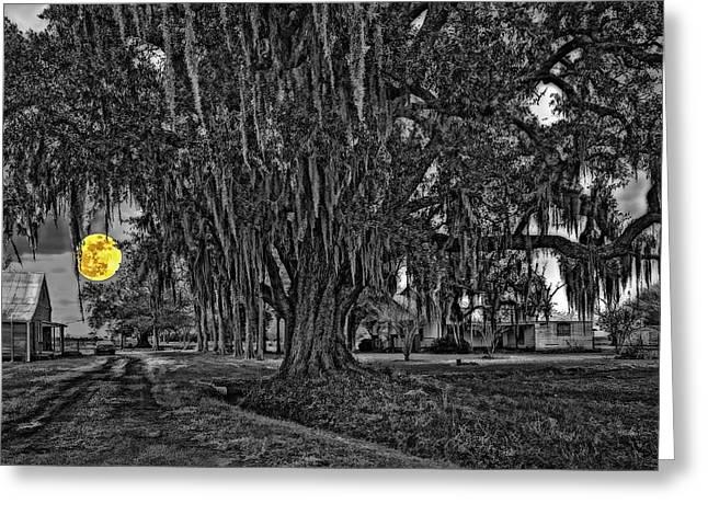 Louisiana Moon Rising Monochrome 2 Greeting Card by Steve Harrington