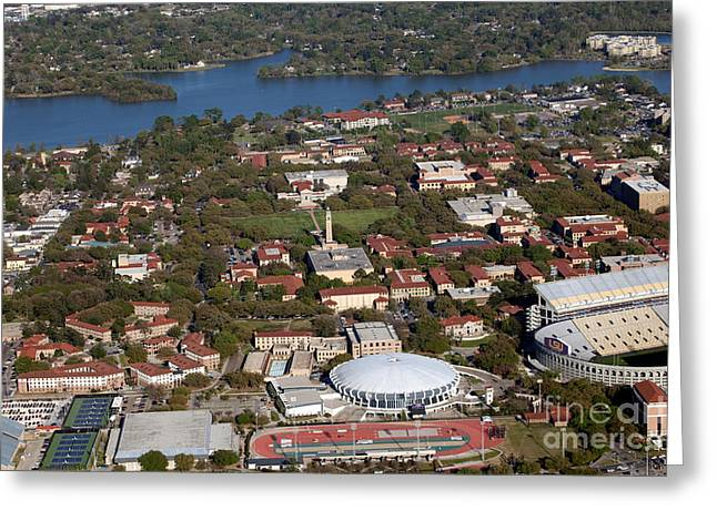 Lsu Campus Greeting Cards - Louisiana State University Campus Greeting Card by Bill Cobb