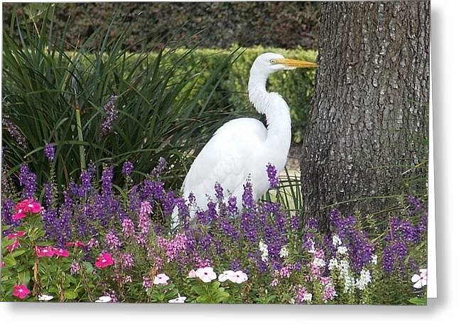 John Glass Greeting Cards - Louisiana Yard Art Greeting Card by John Glass