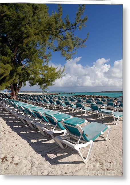 Cruise Vacation Greeting Cards - Lounge Chairs on the Beach Greeting Card by Amy Cicconi