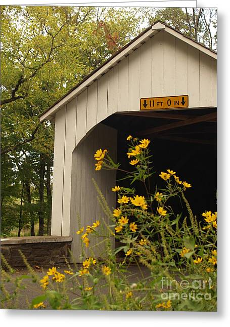 Covered Bridge Greeting Cards - Loux Bridge and Tickseed in September Greeting Card by Anna Lisa Yoder