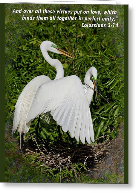 Cooperation Greeting Cards - Love Binds All Together Greeting Card by Dawn Currie