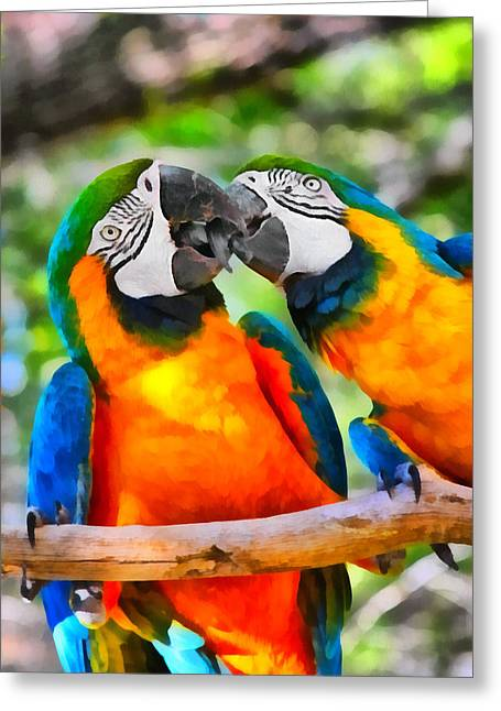 Tropical Bird Greeting Cards - Love Bites - Parrots in Silver Springs Greeting Card by Christine Till