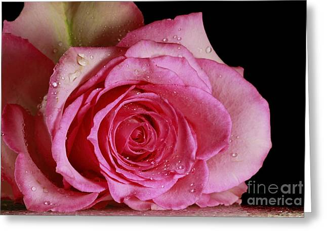 Love Forever  Greeting Card by Inspired Nature Photography Fine Art Photography