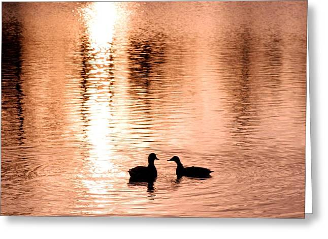 love in water Greeting Card by Hilde Widerberg