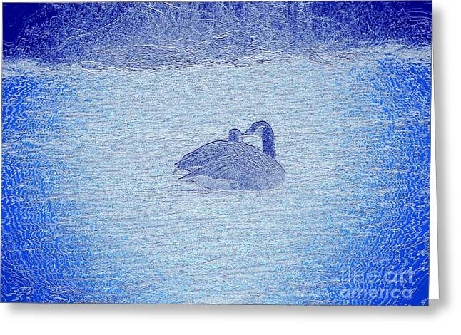 Abstract Digital Photographs Greeting Cards - Love Is All Around Us Greeting Card by Robyn King
