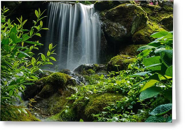 Love Is Like A Waterfall Greeting Card by Jordan Blackstone