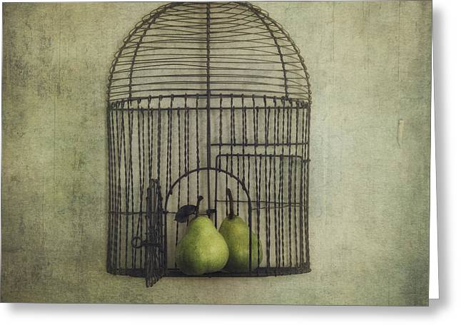 Bird Cage Greeting Cards - Love is the key Greeting Card by Priska Wettstein