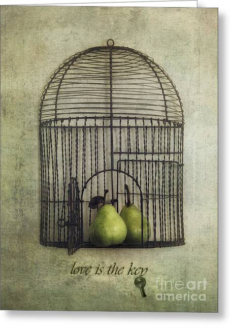 Digital Collage Greeting Cards - Love is the key with typo Greeting Card by Priska Wettstein