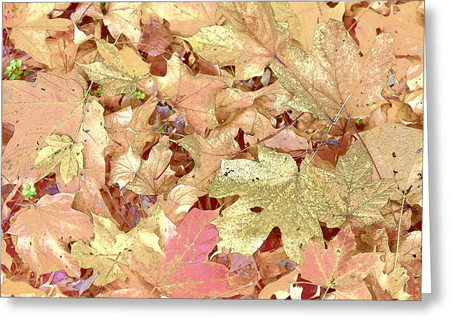 Indiana Autumn Greeting Cards - Love Leafs Greeting Card by Indiana Zuckerman