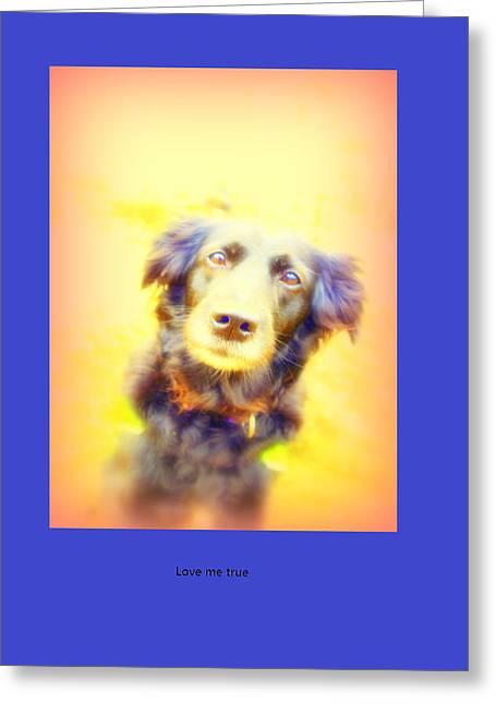 Despair Mixed Media Greeting Cards - Love me tender love me true Greeting Card by Hilde Widerberg
