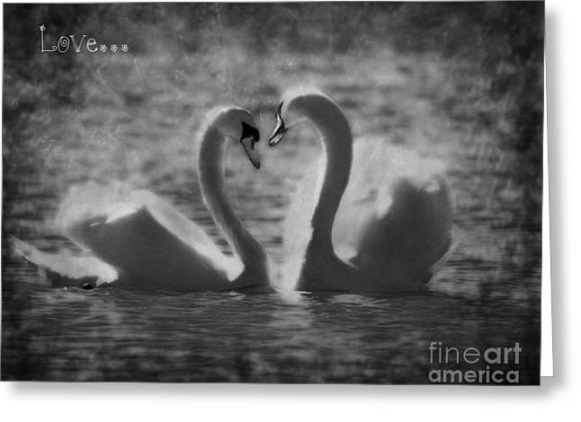 Photoart Greeting Cards - Love... Greeting Card by Nina Stavlund