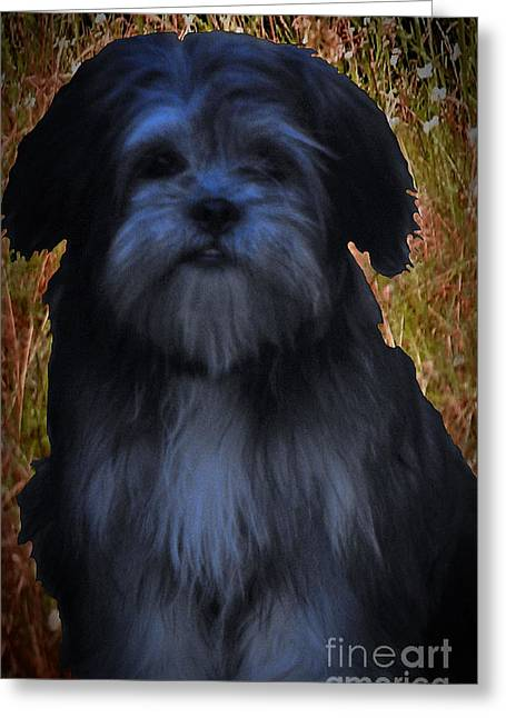 Puppies Mixed Media Greeting Cards - Love Puppies Greeting Card by Katherine Williams