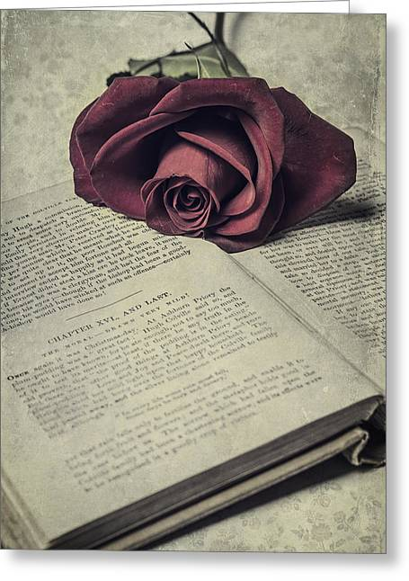 Flower Blossom Greeting Cards - Love Stories Greeting Card by Joana Kruse