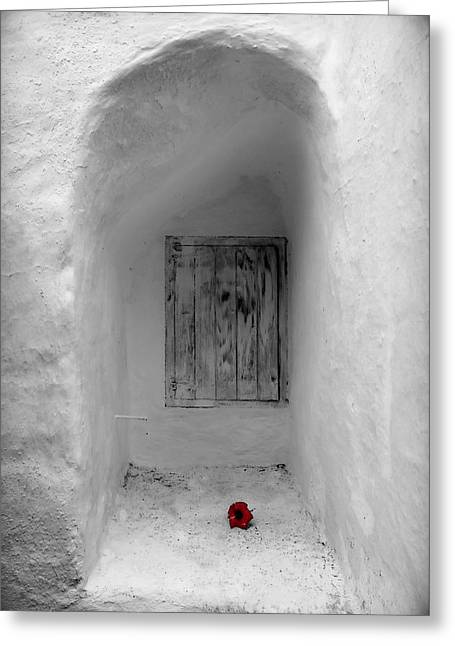 Remembering The Tragedy Of Romeo And Juliet This Closed Windows Receives A  Flower As Love Gift Greeting Card by Pedro Cardona