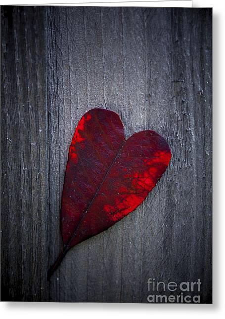 Love Greeting Card by Svetlana Sewell