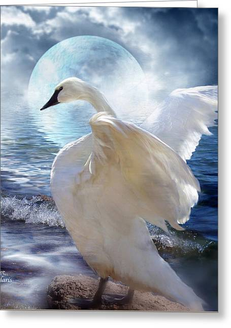 White Swan Greeting Cards - Love Swept Greeting Card by Carol Cavalaris