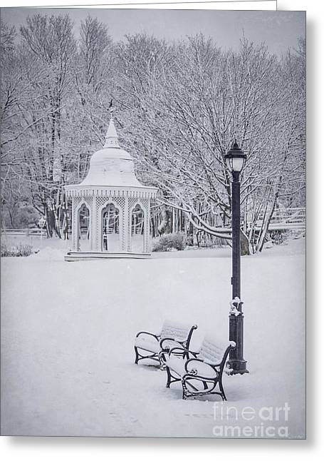 New England Winter Greeting Cards - Love Through The Winter Greeting Card by Evelina Kremsdorf