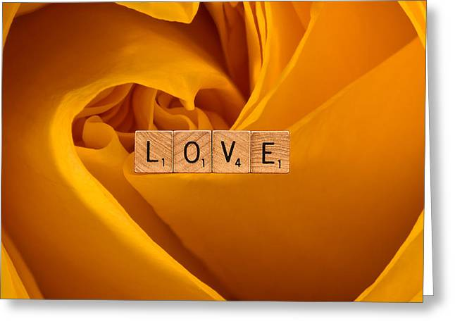 Daniel Photography Greeting Cards - LOVE-Yellow Rose Greeting Card by  Onyonet  Photo Studios