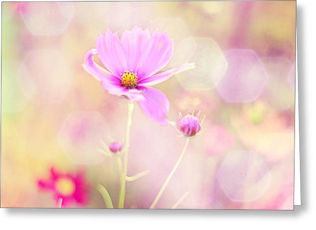 Pink Flower Greeting Cards - Lovechild Greeting Card by Amy Tyler