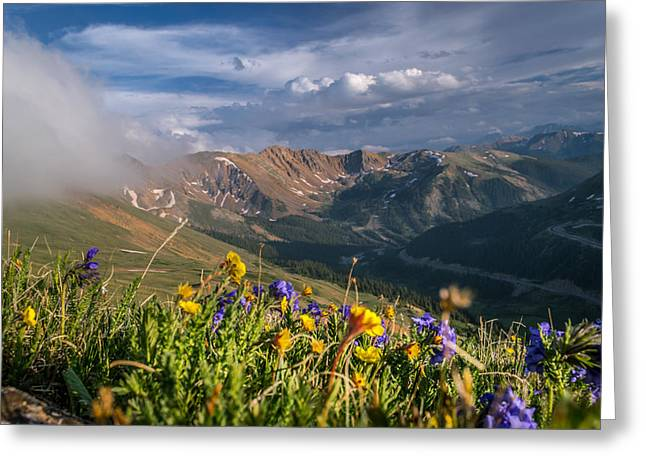 Stream Greeting Cards - Loveland Pass Summer Greeting Card by Michael J Bauer