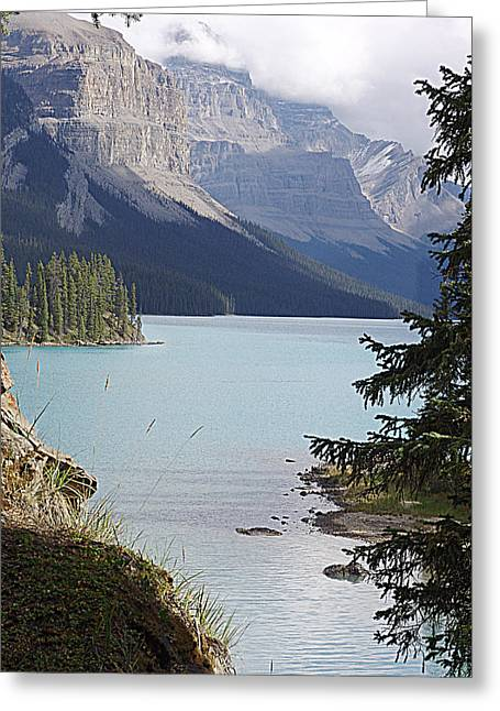 Lovely Maligne Greeting Card by Janet Ashworth