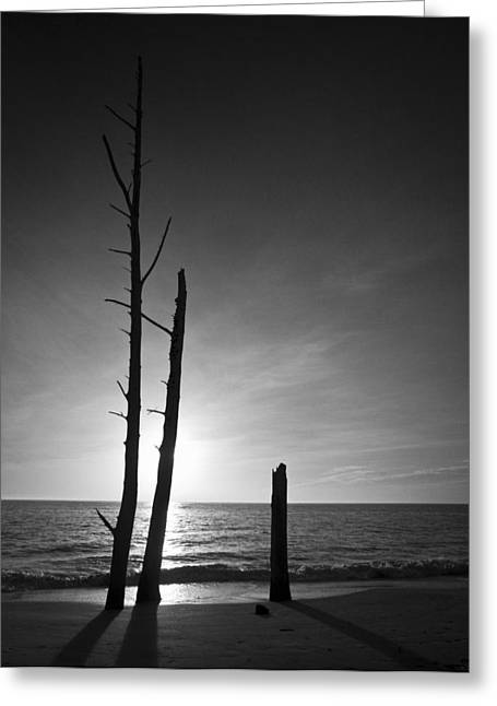 Ocean Art Photography Greeting Cards - Lovers Key Sunset Black And White One Greeting Card by Bradley R Youngberg