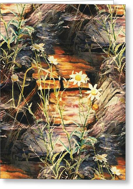 Enhanced Paintings Greeting Cards - Loves Me Loves Me Not Greeting Card by Melodye Whitaker