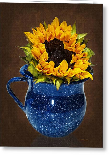 Old Pitcher Greeting Cards - Loving A Sunflower Greeting Card by Phyllis Denton