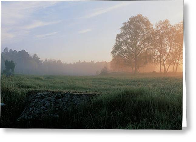 Morning Mist Images Greeting Cards - Lovo Uppland Sweden Greeting Card by Panoramic Images