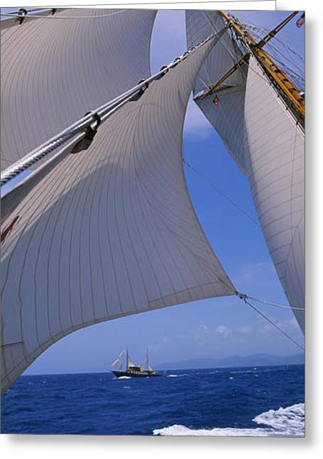 Blue Sailboat Greeting Cards - Low Angle View Of A Sailboats Mast Greeting Card by Panoramic Images