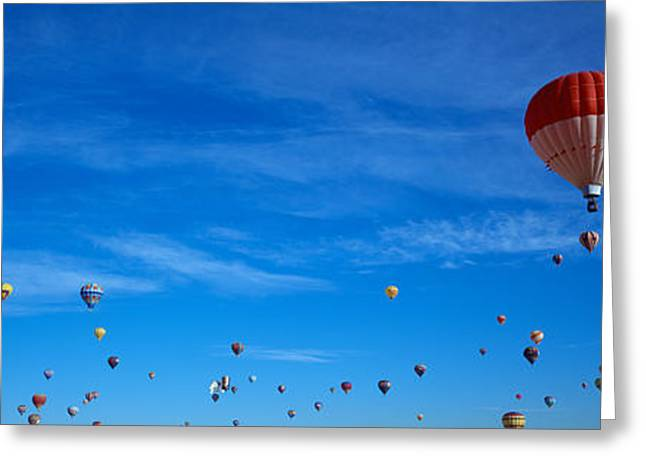 Mid-air Greeting Cards - Low Angle View Of Hot Air Balloons Greeting Card by Panoramic Images