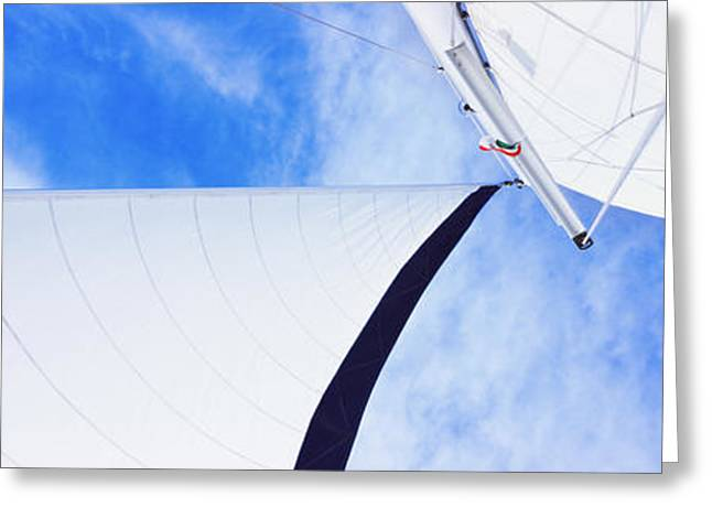 Sailboat Images Greeting Cards - Low Angle View Of Sails On A Sailboat Greeting Card by Panoramic Images