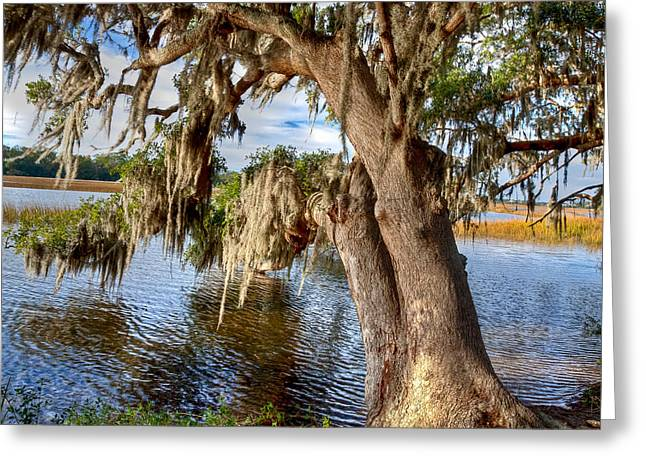 Best Sellers -  - Oak Creek Greeting Cards - Low Country Creek Greeting Card by Walt  Baker