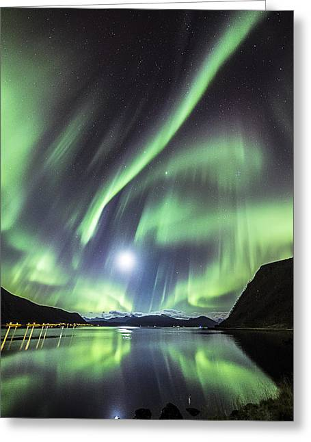 Astrophoto Greeting Cards - Low moon Greeting Card by Frank Olsen
