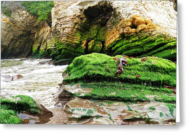Cliffs Pyrography Greeting Cards - Low Tide Greeting Card by Andrew  Stoffel