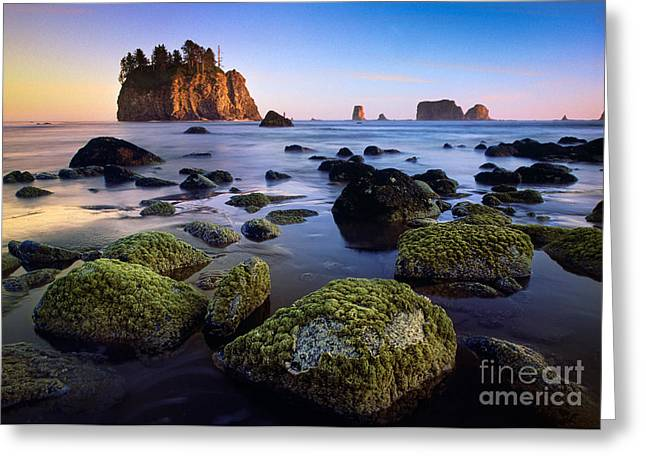 Reflecting Water Greeting Cards - Low Tide at Second Beach Greeting Card by Inge Johnsson