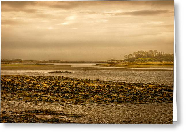 Low Tide Cape Porpoise Maine Greeting Card by Bob Orsillo