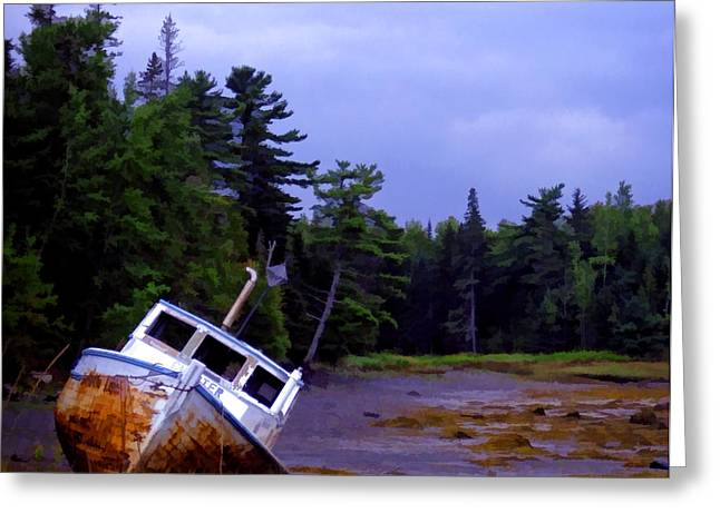 Maine Beach Greeting Cards - Low Tide Greeting Card by Edward Fielding